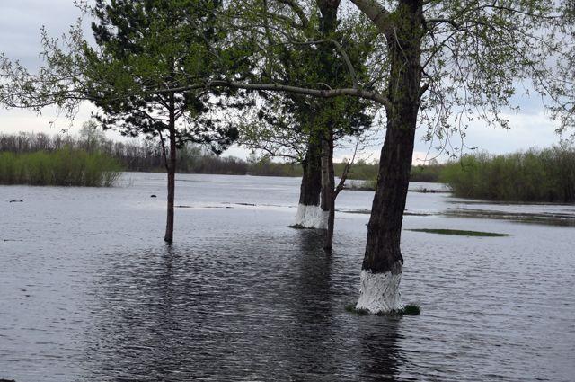 В Ялуторовском районе мост через реку Тобол закроют на время паводка
