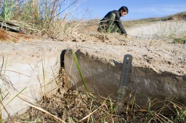 Когда на Земле ещё не было людей, кто-то построил в Ростовской области  дорогу из этих плит.