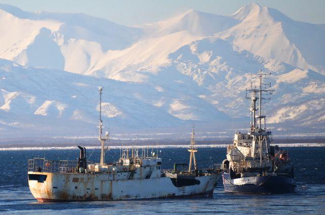 Капитан судна заплатит практически млн. руб. за преступный вылов минтая