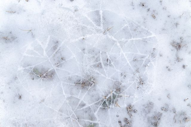 На улице установилась тёплая погода, и лёд стал очень ломким.