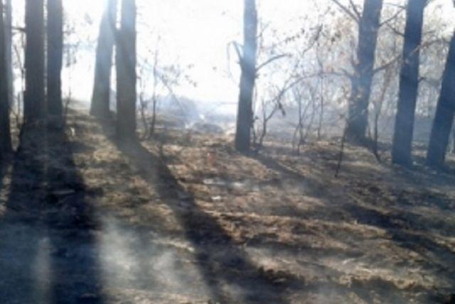 Пензенцев просят соблюдать на противопожарные правила.