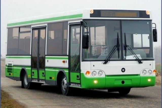 ВПетербурге вночь наПасху будут ходить ночные автобусы