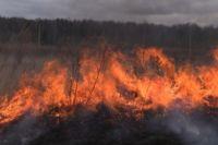 Пал опасен большими пожарами