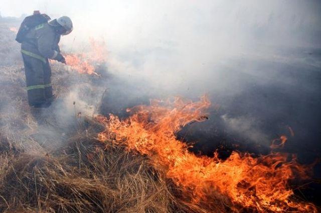 В Кемеровской области вводится особый противопожарный режим.