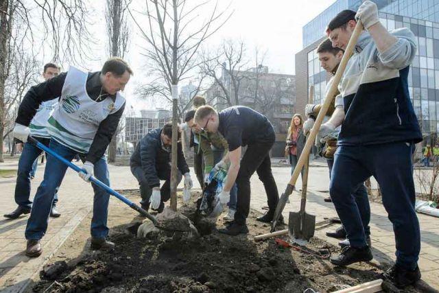 Вместе с активистами и членами Молодёжного правительства Алексей Гордеев высадил саженцы клёнов.