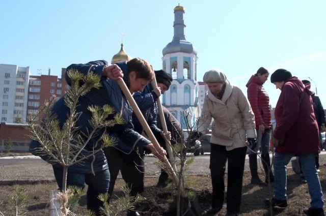 В честь Пасхи на территориях храмов в Кузбассе высадят деревья.