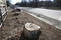 Жители ЧМЗ думают, что на месте деревьев сделают парковку.