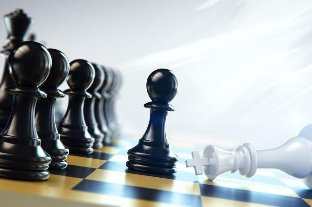 На променаде в Зеленоградске появится огромная шахматная доска.