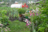 Тюменцам рекомендуют чаще навещать свое загородное жилище