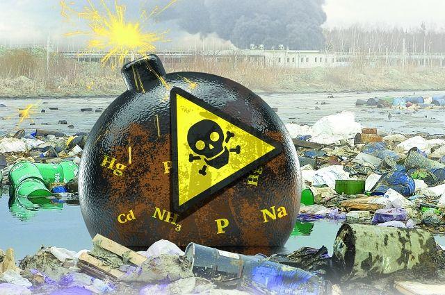 Активисты отыскали вШушарах огромную свалку сопасным мусором