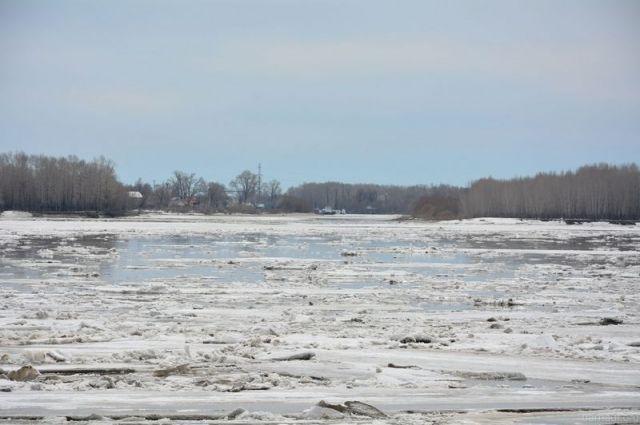 Прокуратура держит под контролем ситуацию с загрязнением реки