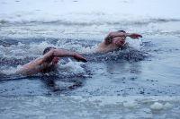 По словам эксперта, в России есть много спортсменов, способных повторить заплыв Виталия Панасюка.