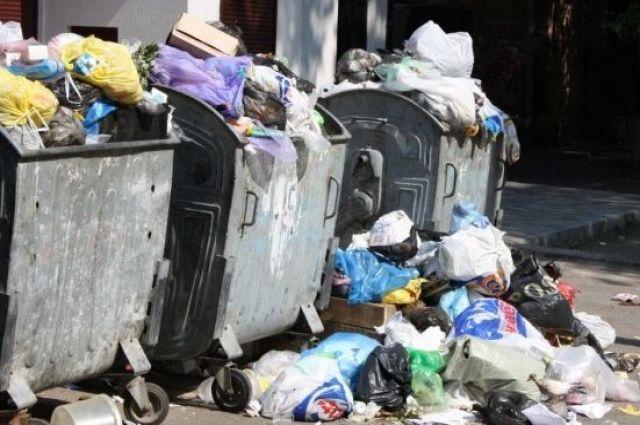Львовский мусор добрался до Житомирской области