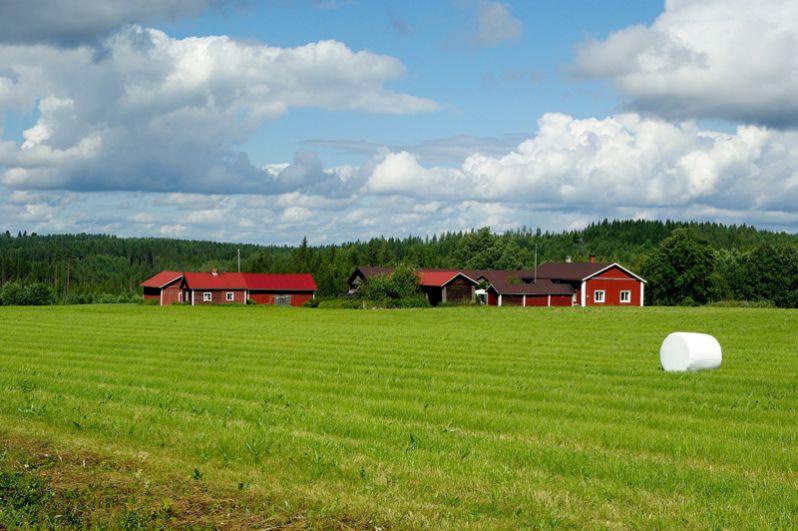 Финляндия оказалась самой безопасной страной мира по версии специалистов Всемирного экономического форума.