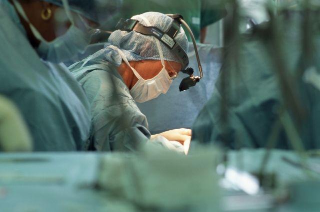 Английские медработники готовятся пересаживать детям пищеводы свиней