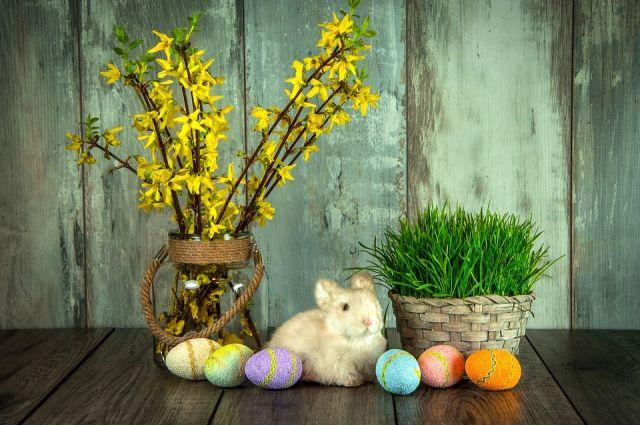 Каждый омич украсил пасхальные яйца по-своему.
