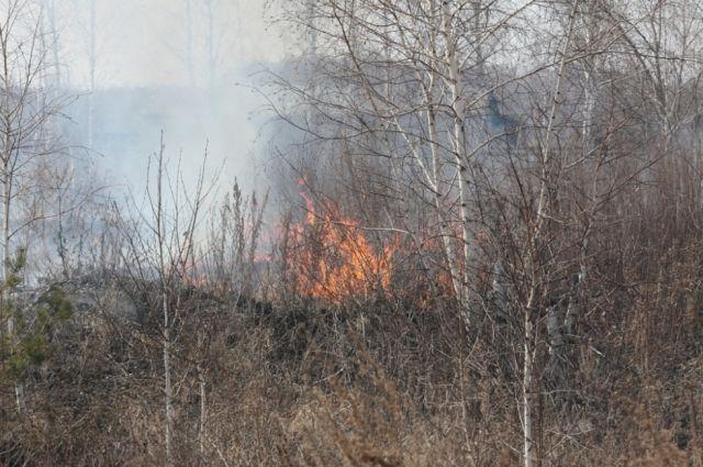 Три лесных пожара устранили  вЧелябинской области засутки