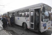 Автобусы поедут с 29 апреля.