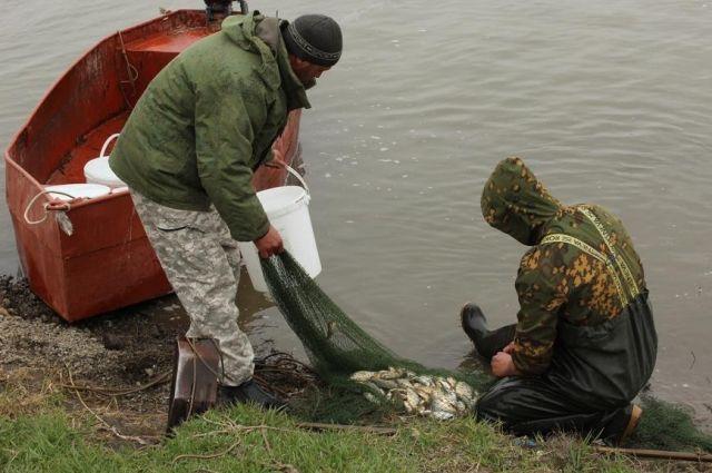 Cпециалисты осматривают пруды, дают оценку санитарному состоянию береговой зоны, проводят дезинфекцию водоемов.
