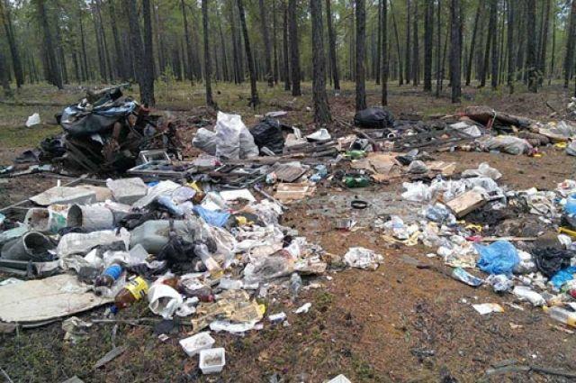 В течение первого квартала текущего года экологи выявили 13 фактов вывоза бытовых отходов из Львова