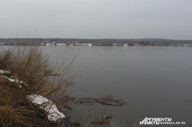 До конца апреля вода в Томи продолжит подниматься выше и выше.