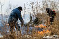 Часто к пожарам приводит тяга людей к поджогу травы.