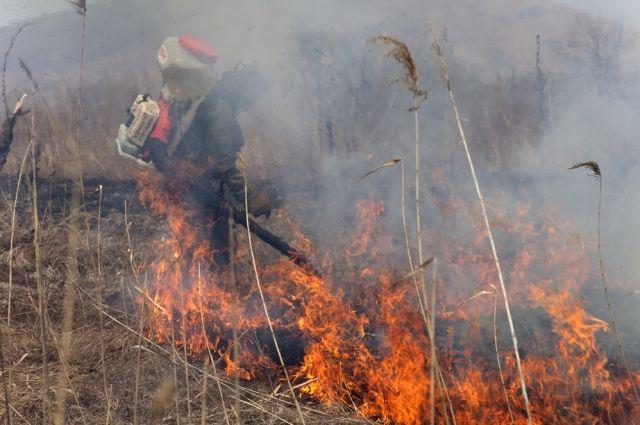 Большой огонь может вызвать даже не затушенный окурок