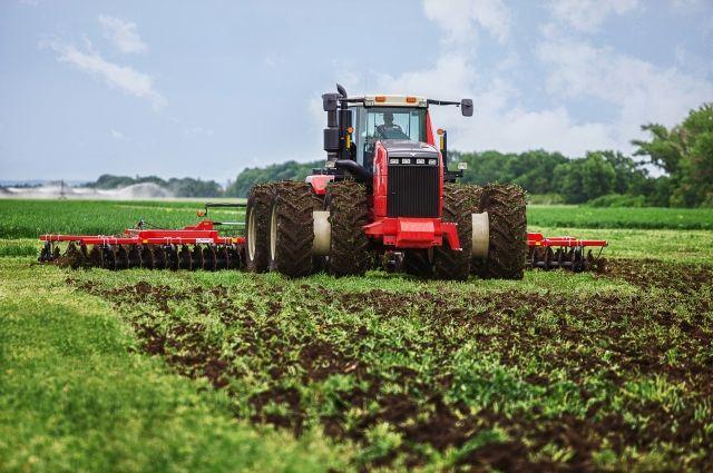 ВДагестане провели яровой сев наплощади около 66 тыс. гектаров