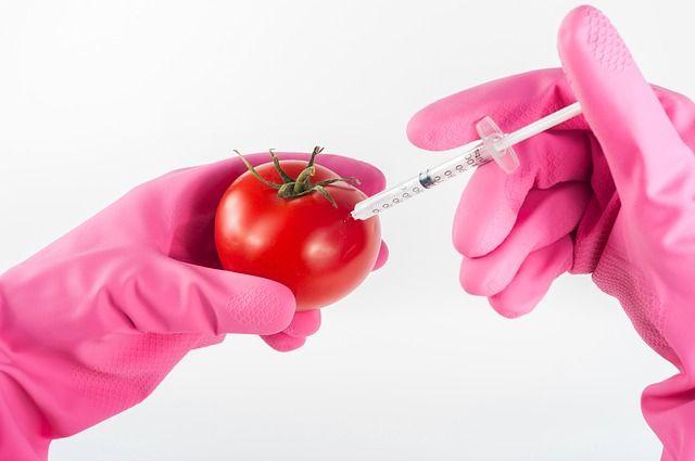 Cегодня нет достоверных данных ни о том, что ГМО наносят вред, ни о том, что они безопасны.