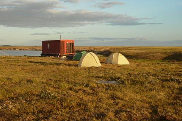 Ямальский историк подготовила доклад о экспедициях, проходивших в округе, в военные годы.