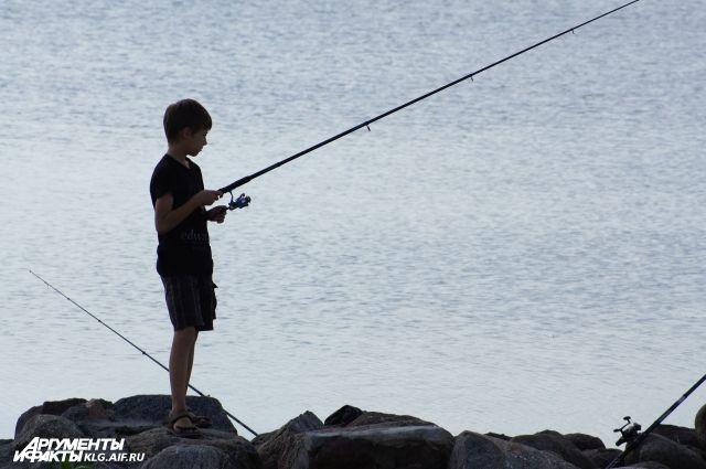 На водоемах Калининградской области на два месяца запретили вылов рыбы.