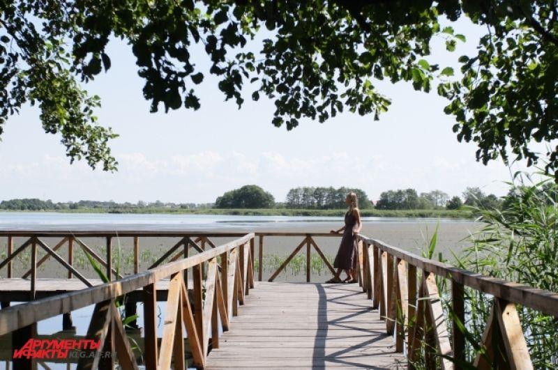 Озеро Чайка – самое большое пресноводное на Куршской косе. В 19 веке  жители поселка Рыбачьего собирали на озере чаячьи яйца, в начале 20 века,  после образования в поселке первой в мире станции кольцевания, озеро было объявлено государственным заповедником, а сбор яиц был запрещен.