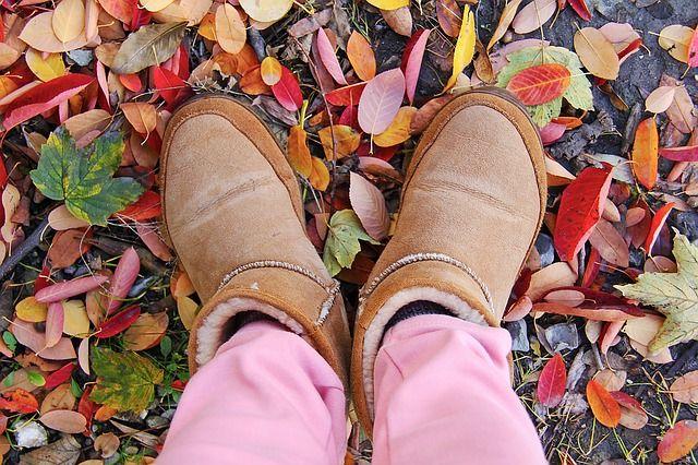 ВПетербурге преподавателей оштрафовали запоход, вкотором дети отморозили ноги