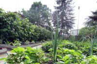 Аренда загородной недвижимости получает всё большее распространение
