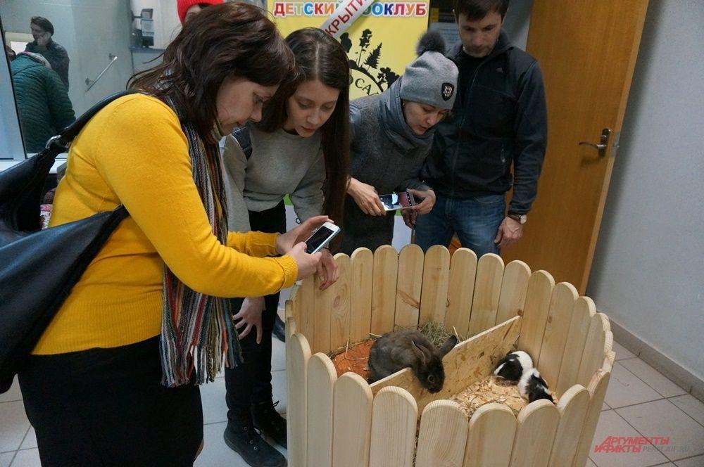 В библиотеке пермяки фотографировались с животными.