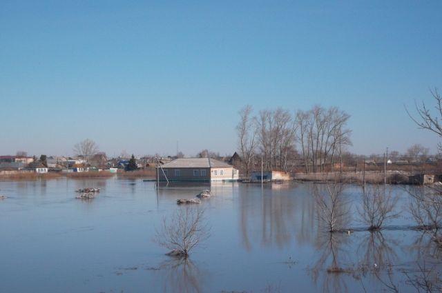 Впервые числа мая уровень воды вОби врайоне Барнаула поднимется