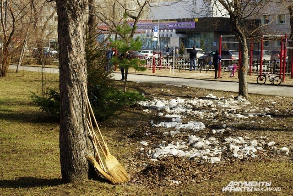 За зиму улицы Новосибирска, особенно парки и скверы, наполнились большим количеством мусора