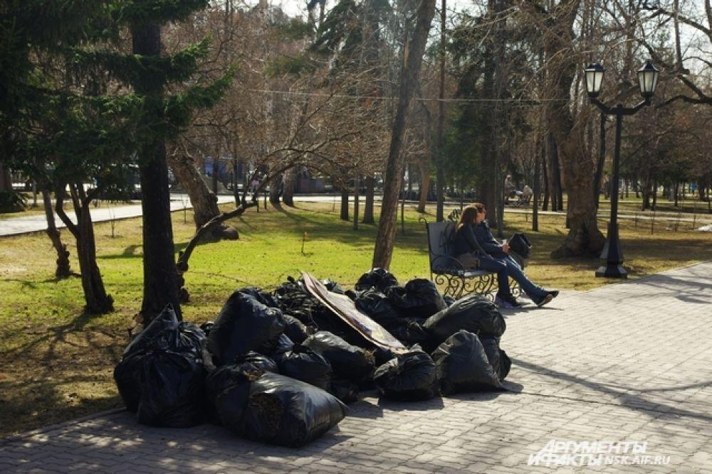 Каждую весну благодаря неравнодушным новосибирцам город преображается