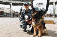 Овчарка Кима получила награду: животное раскрыло 11 преступлений