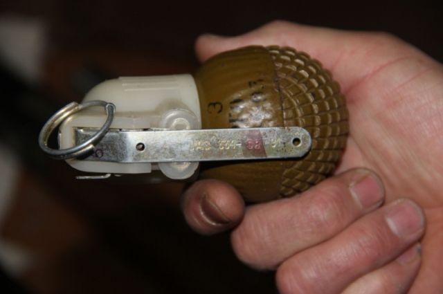 ВПетербурге около отеля отыскали две гранаты