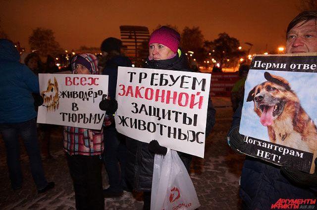 В Перми ежемесячно стали проходить митинги в защиту животных.