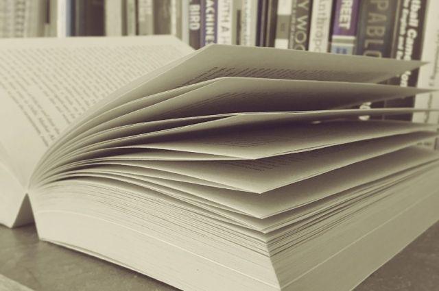 Книга состоит из двух томов.