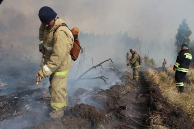 В 3-х районах Челябинской области введен особый противопожарный режим