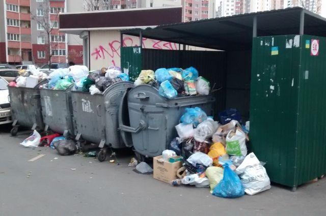 Введение отдельной коммунальной услуги создаст экономически сбалансированную систему сбора мусора