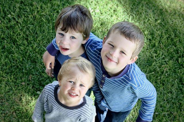 На участки могут претендовать семьи, в которых трое и более детей.
