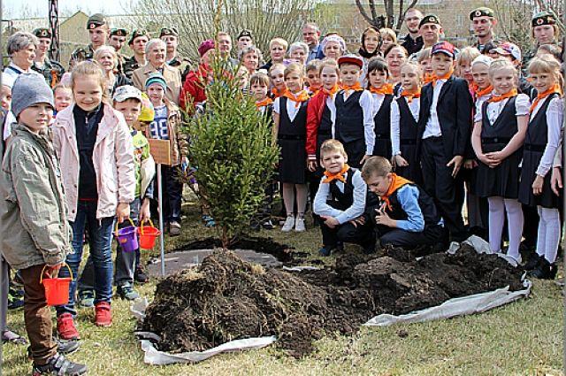 Посадка деревьев стала уже хорошей традицией.
