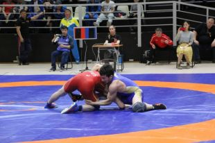 Сборная Кузбасса одержала победу в чемпионате СФО по вольной борьбе.