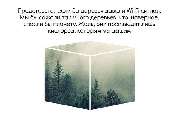 В Тюмени стартовал конкурс фотографий «Добрая коробка»