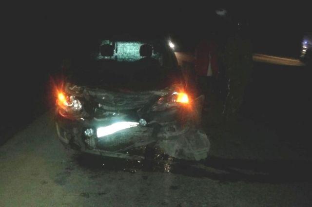 Машина столкнулась с лосем, который перебегал проезжую часть слева на право.