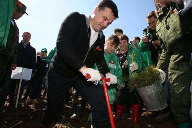 Столичная область: ВПодмосковье высадили неменее 500 гектаров леса